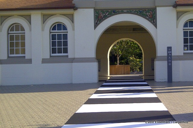 Black and White Striped Carpet, Taronga Zoo