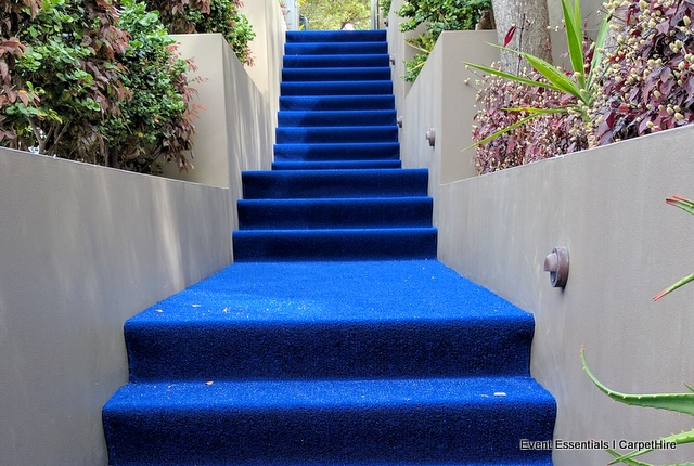 Blue Astro Turf on Stairs