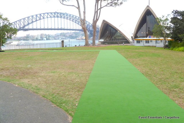 Green Carpet Photo Opportunity, Sydney