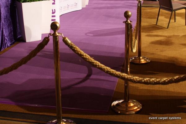 Purple Carpet Entrance: Annual Charity Ball