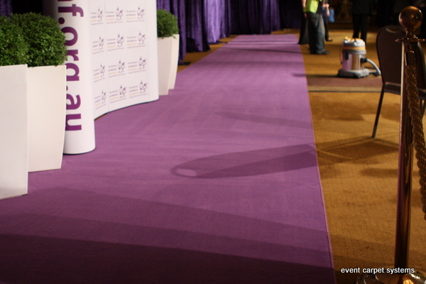 Purple Carpet Entrance: Annual Charity Ball